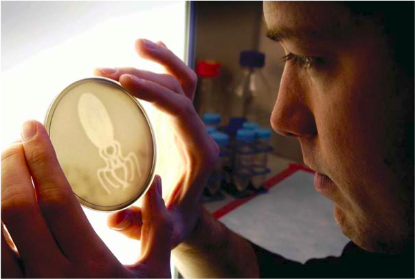 Imprints: Bacterial Photography, By Jeff Tabor