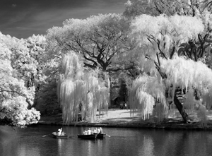 Central Park Boaters © Gail Dohrmann