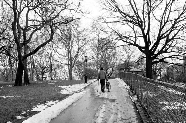Luis Montalvan walking with Tuesday ©Leslie Granda-Hill